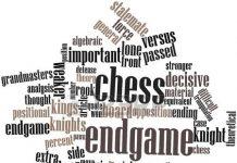 satranc-terimleri
