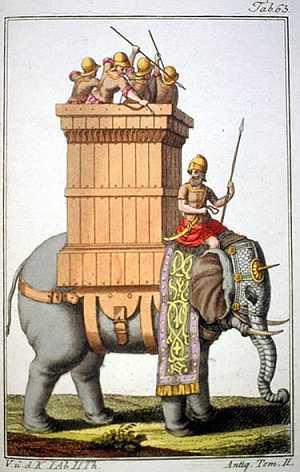 Fil'e Karşı Fil ve Piyon