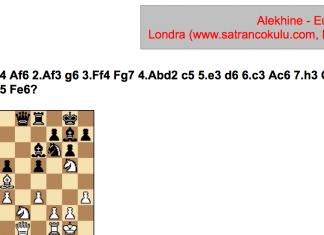 alekhine-euwe